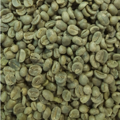 Buy Green Coffee Beans Online Costa Rican 1 Lb Bag Kaldi
